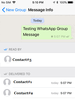 WhatsApp tick meaning in group chats