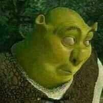Shrek meme profile picture