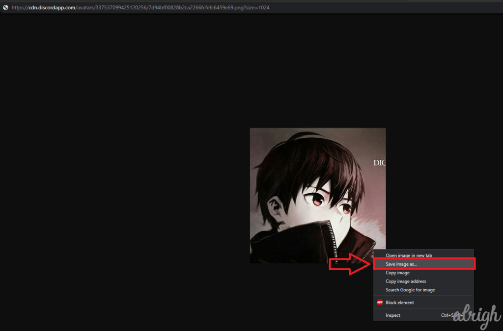 Download Discord Profile Picture with Bot Commands 10