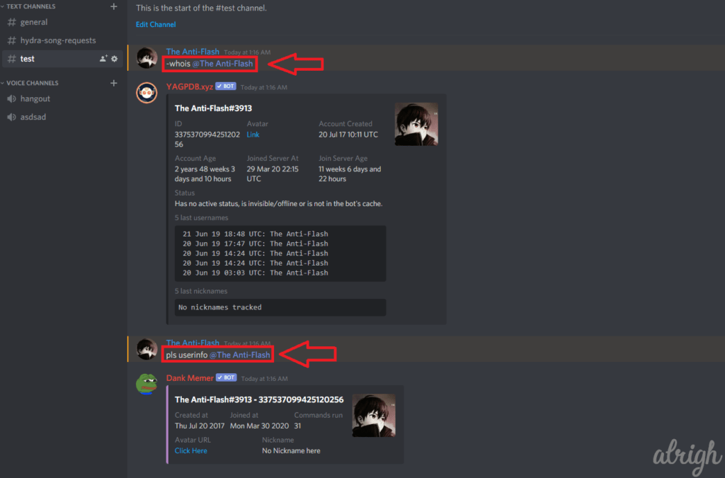 Download Discord Profile Picture with Bot Commands 2