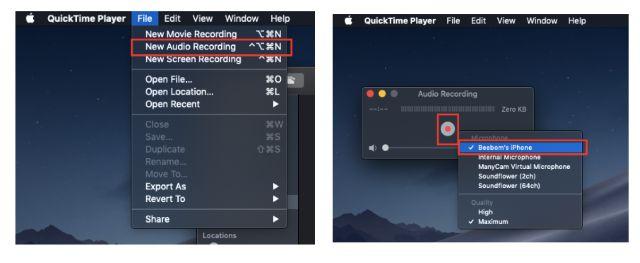 WhatsApp Call Recording on iOS Step 1