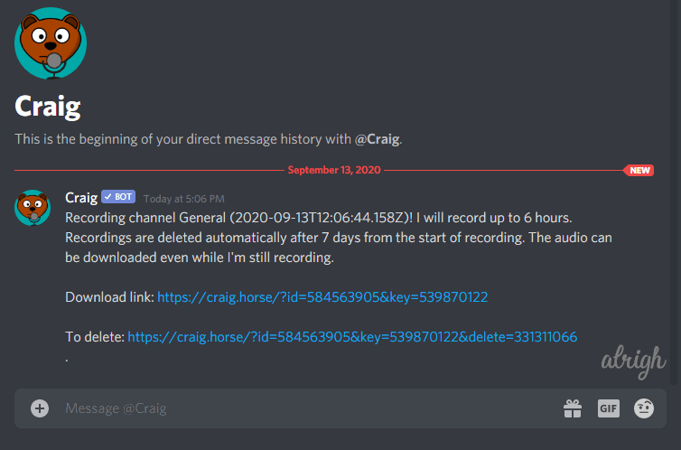 Use Craig Bot To Record Audio On Discord 4